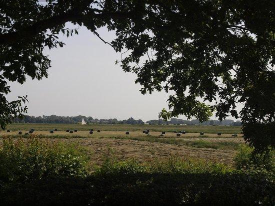 Hall Farm Cottages Photo