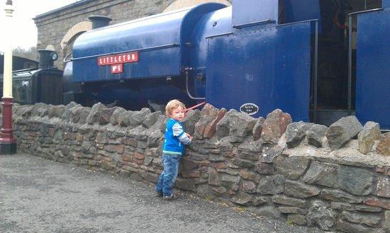 Avon Valley Railway (AVR): George @ Avon Valley Railway