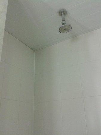 Hotel Ibis Buenos Aires Obelisco: Shower