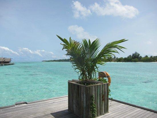 LUX* South Ari Atoll: Vista mare