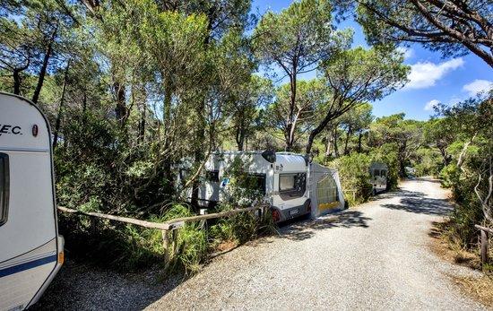 Camping Maremma Sans Souci: Piazzole