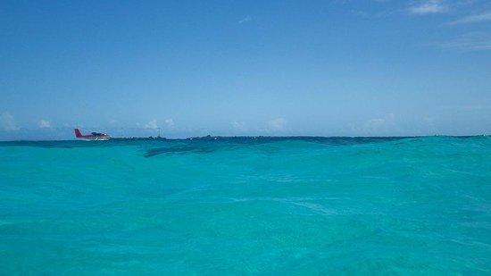 Veligandu Island Resort & Spa : seaplane