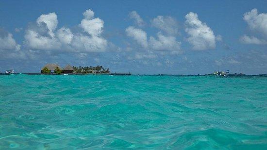 Veligandu Island Resort & Spa : sea plane docking