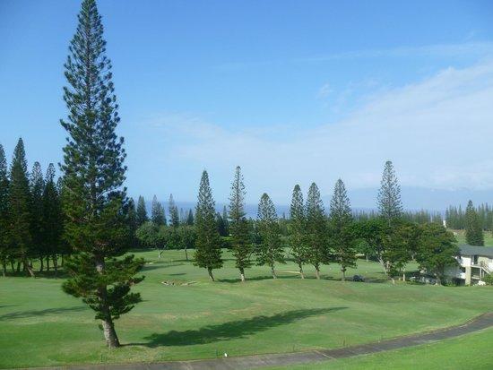 The Kapalua Villas, Maui: Vistas desde la habitación