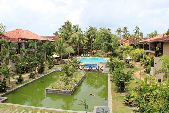 Portofino Resort Tangalle: Pond and Pool