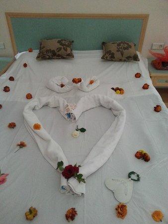 Club Paradiso Resort : Room:)