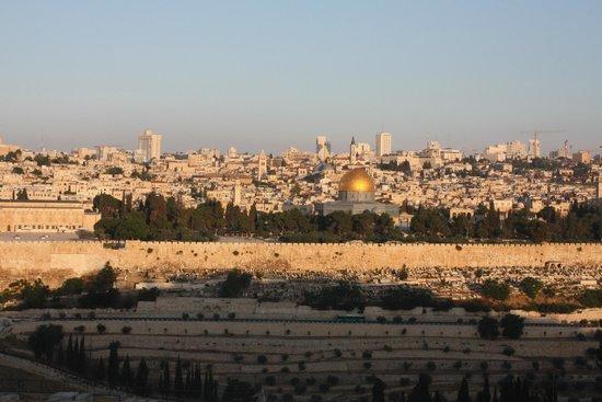 호텔 세븐 아치스 예루살렘 사진