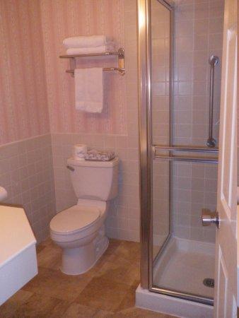 Portofino Hotel: Bath w/ walk in shower