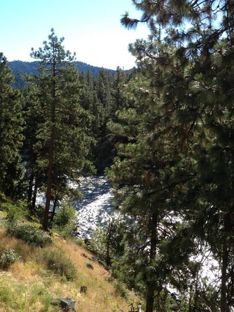 Alpine Rivers Inn: Morning view