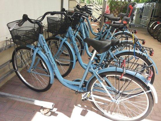 Gemma: Le nuove bici.