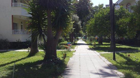 Sirma Hotel: Sirma Apartment area