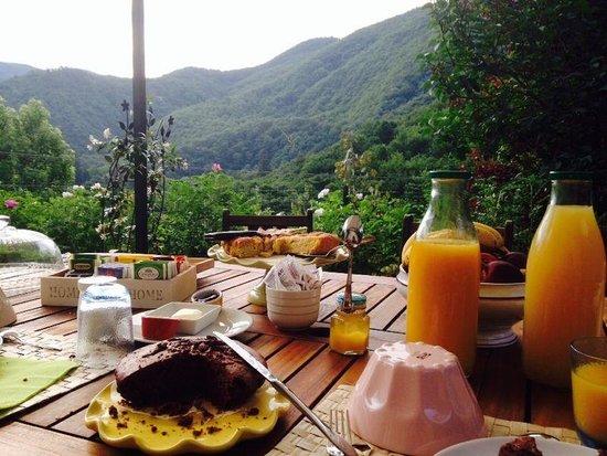 B&B Alle Redole: panorama durante la colazione!