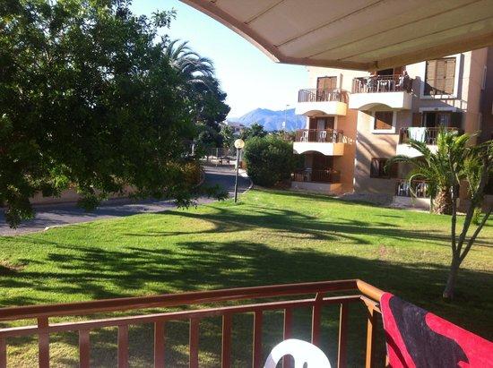 Albir Garden Resort: Grounds