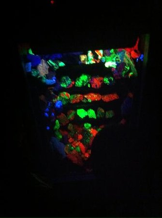 Electric Ladyland - the First Museum of Fluorescent Art: Same rocks, different light