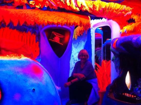 Electric Ladyland - the First Museum of Fluorescent Art: Electric lady