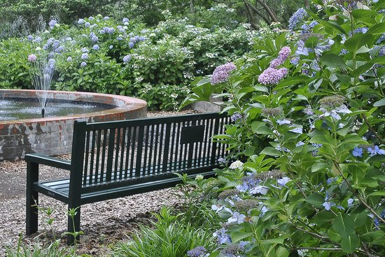 Brookgreen Gardens: a place to rest among the lacecap hydrangea