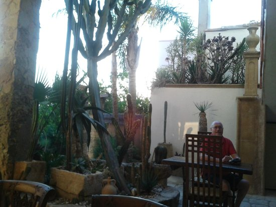 Felline In B&B: Lo splendido giardino