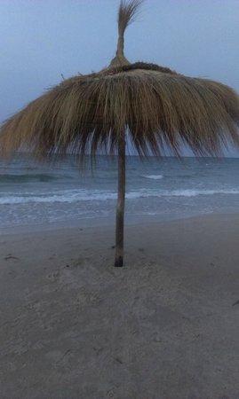 Thalassa Sousse Resort & Aquapark: palemka