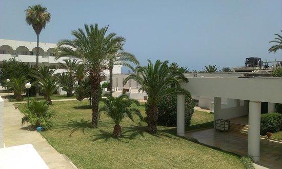 Thalassa Sousse Resort & Aquapark: palemki