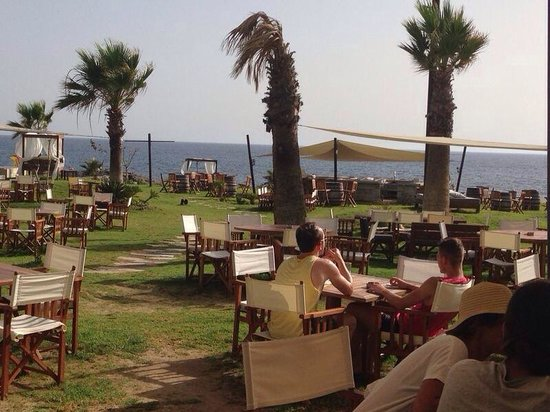 Suite48 Grill & Lounge Bar: Best view in paphos.