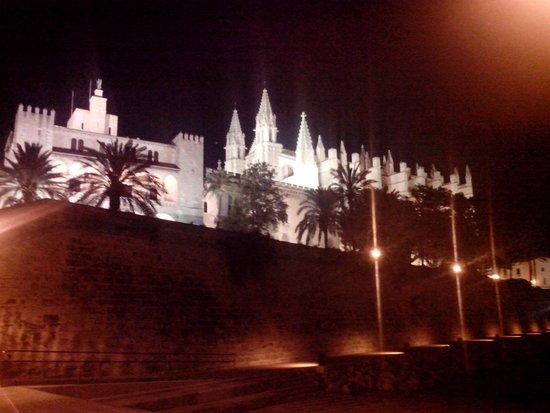Palma Cathedral Le Seu : собор ночью