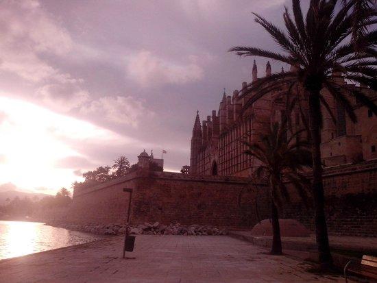 Palma Cathedral Le Seu : собор на закате