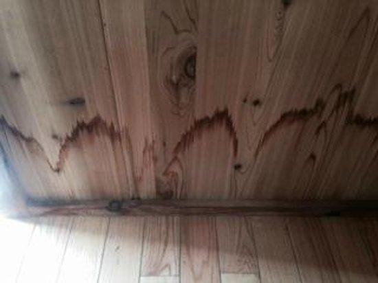 Tremont Outdoor Resort: apparent water damage