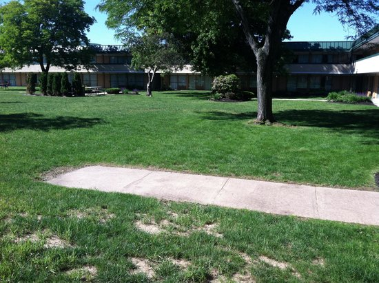 Quality Inn & Suites Conference Center: The Courtyard