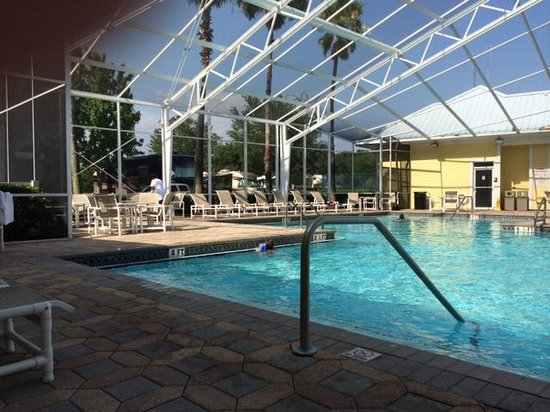 Lazydays RV Resort : Nice lounge area. Pool is very clean with nice big steps into water.