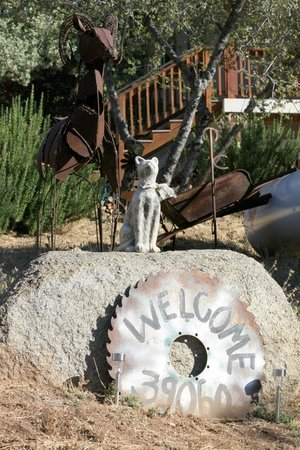 Yosemite Sierra View Bed & Breakfast: Welcome!