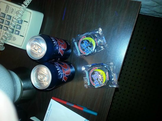 The Thunderbird Inn: MoonPies and soda