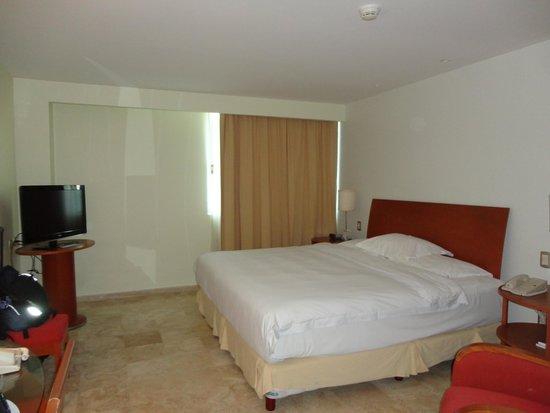 Hyatt Regency Villahermosa: camera doppia