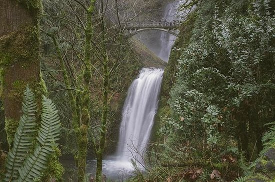Columbia River Gorge National Scenic Area: Multonomah Falls, Columbia River Gorge Scenic Highway