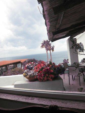 Park Hotel & Terme Romantica: вид из зоны ресепш