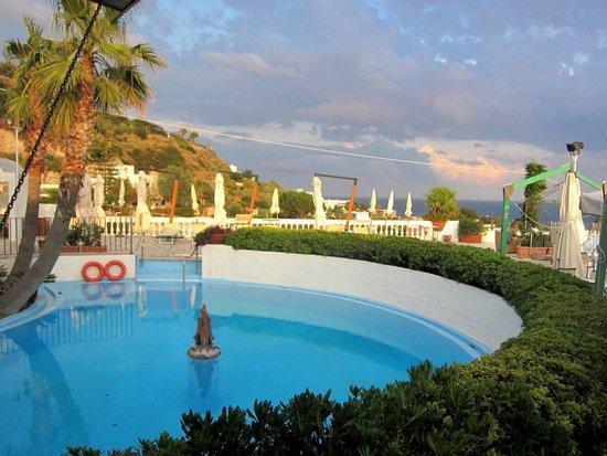 Park Hotel & Terme Romantica: бассейн на территории бара