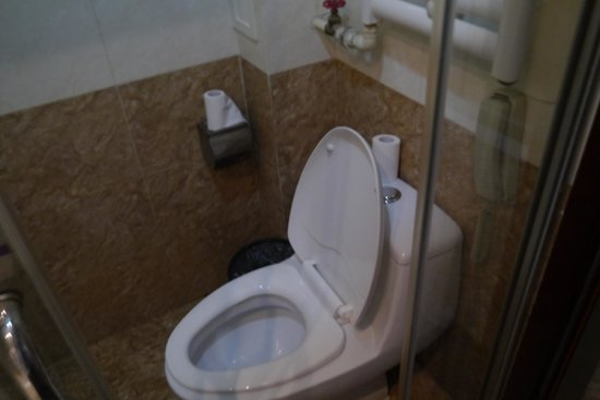 Beijing Dajiaoting International Business Hotel: The toilet was inside the bath