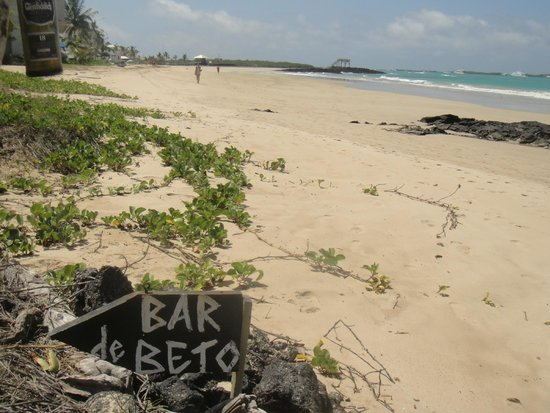 Beto's Beach Bar Hotel: Playa desde el bar