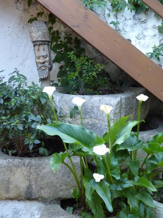 Hotel Enfrente Arte: Garden
