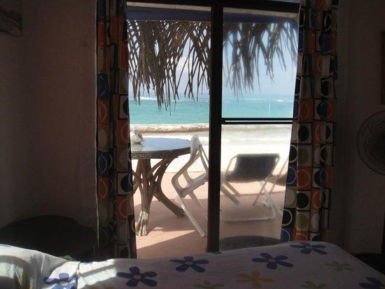 Hostal Galapagos: Vista desde la cama de la suite