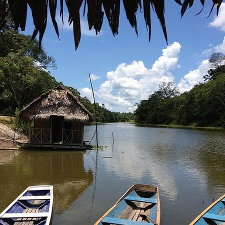 Muyuna Amazon Lodge: The beautiful view from Muyuna
