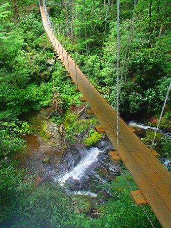 Sky Valley Zip Tours: Swinging Bridge