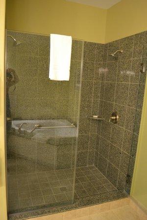 Smugglers' Notch Resort: Shower - Master bathroom