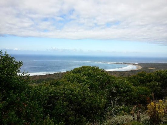 Brenton on Sea Cottages: Brenton beach from above