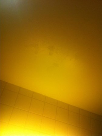 Thon Hotel Oslo Panorama: Mold stains in the ceiling