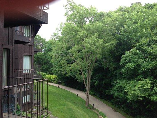 Eagle Ridge Resort & Spa: room view rom balcony