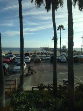 Venice Whaler Bar & Grill : View from the rooftop bar area of Venice Whaler