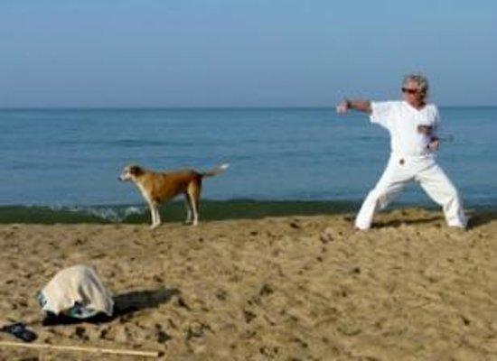 "Tina Beach Resort: Morgens vor dem Tina, Kampfkunst in Vollendung mit Hund ""Tina"" !"