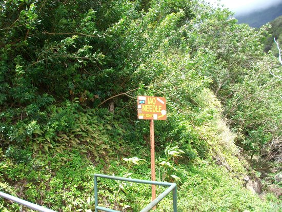 Iao Valley State Monument : JUST A SIGN READING IAO NEEDLE