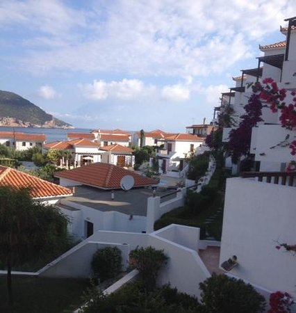 Skopelos Village: across the rooftops to the harbour