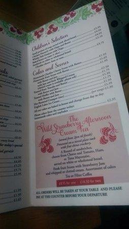 The Wild Strawberry: menu 3